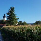 Wärmeversorgung für Gemeindegebäude – zu 100 % aus nachhaltiger Erzeugung!