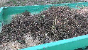 Gras- und Strauchschnitt: Bitte richtig entsorgen!