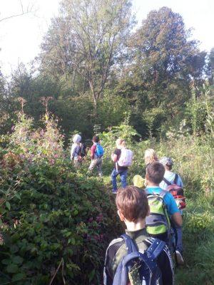 Ausflug ins Naturschutzgebiet Mühlau am 23.9.2020
